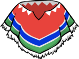 Colourful Poncho