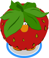Strawberry Costume IG