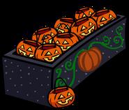 Pumpkin Basket Location 2018