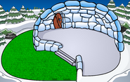 Backyard Igloo IG