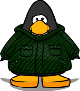 Green Winter Jacket 2