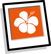 Orange Hawaiian Background Icon