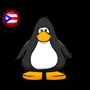 Puerto Rico Flag PC