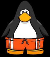 Orange Shorts PC