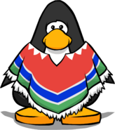 Colourful Poncho PC