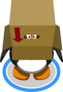 Box Hat In-game