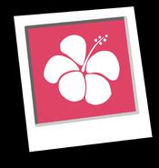 Pink Hawaiian Background Icon