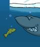 SHARK card image