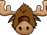 Zeus The Moose Head