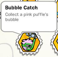 BubbleCatchStampBook