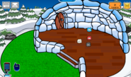 Snook Igloo