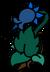Magical Fairy Plant