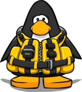 Wilderness life jacket playercard