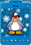 Thorn Player Card - Early January 2019 - Club Penguin Rewritten