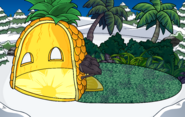 Pineapple Igloo IG