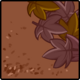 Dirt & Leaves