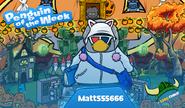 Penguin of the Week 77 - Matt555666 - Club Penguin Rewritten