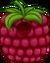 Raspberry Costume