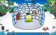 Thorn Igloo - Late August 2019 - Club Penguin Rewritten