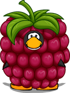 Raspberry Costume PC