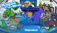 Pinkowlcat