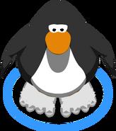 Snow Monkey Feet IG
