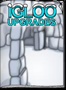 Igloo Upgrades Jan 18