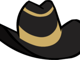 Luxury Cowboy Hat