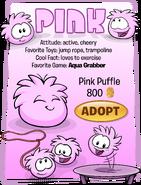 Pink Puffle Adopt Catalog