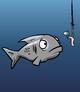 GRAY FISH card image