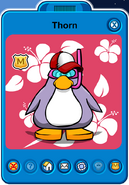 Thorn Player Card - Late January 2020 - Club Penguin Rewritten (5)