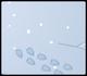 Snowy Floor