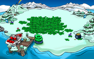 St. Patrick's Day Party 2017 Dock