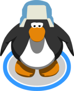 Blue Fuzzy Hat IG