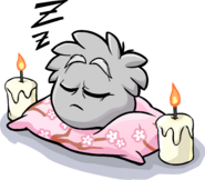 Grey Puffle Sleeping