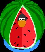 Watermelon Costume IG