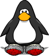 Wool Socks PC