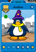 Aodhan Player Card - Mid May 2017 - Club Penguin Rewritten
