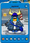 Jaybirdplayercard