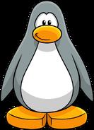 Sensei Gray Create Penguin
