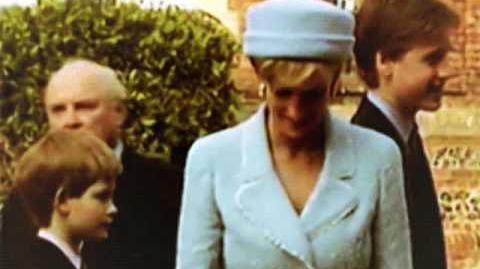 Princess Diana & Prince William & Prince Harry