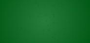 Green Carpet IG