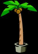 Palm Tree sprite 002