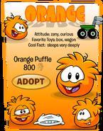 Orange Puffle Adopt Catalog