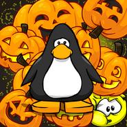 Pumpkin Background PC