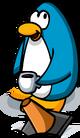 Injured Cone Penguin