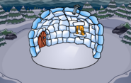 Halloween Igloo Background