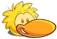 GOLDENduckle4