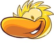 GOLDENduckle1