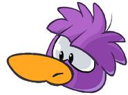PurpleDuckle